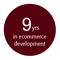 9 years in ecommerce development