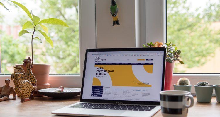 Importance of website